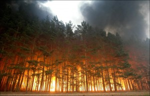 russia-forests-in-fire-03_0
